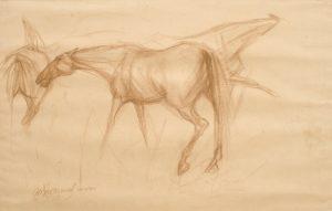 Sunil Das Horses 002